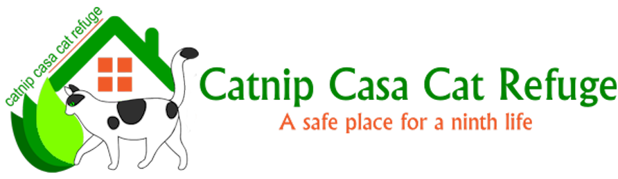 Catnip Casa Cat Refuge