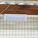 solarlightinshelter