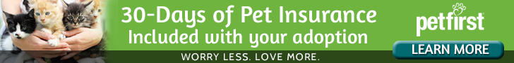 30 days of free pet insurance with each adoption